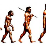 Basic Principles Of Theory Of Evolution